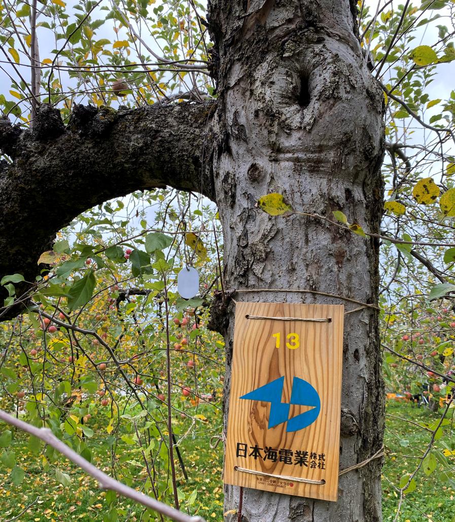魚津りんごの木オーナー制度